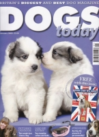 dogs_today_magazine